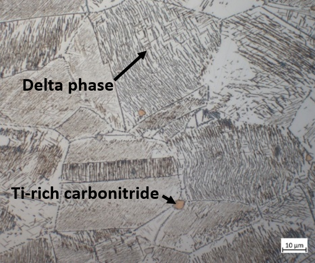 Abundant delta phase, etched with Waterless Kallings.